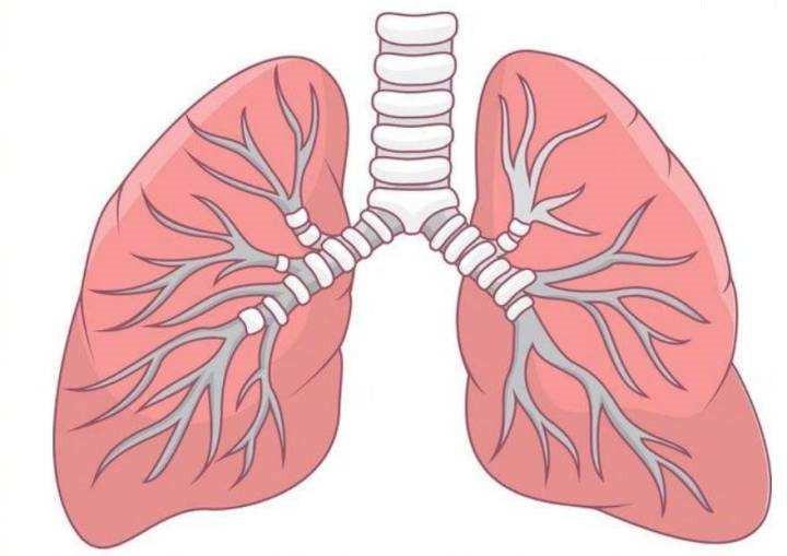 养好肺,做个水润美人,常笑笑吧