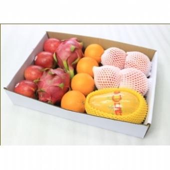 水果礼箱—绿园鲜果B1