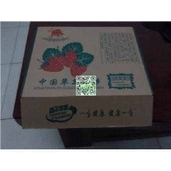 小汤山草莓采摘,(3斤装),北京五环内免费配送到家