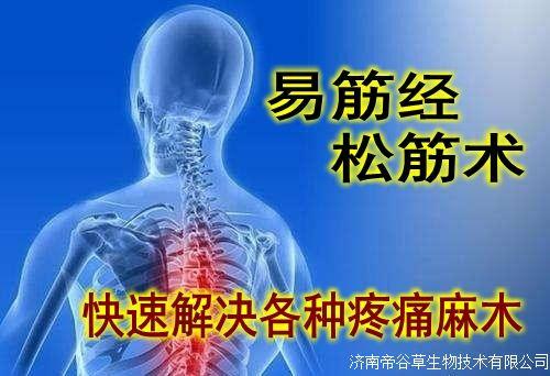 易筋經松筋術--精準治療100多種疼痛麻木