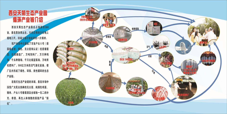 天菊产业园,天菊产业链,生态产业链