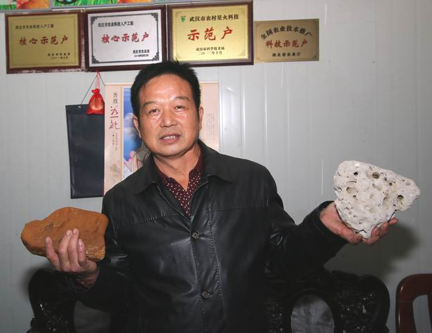 余志华(奇石)