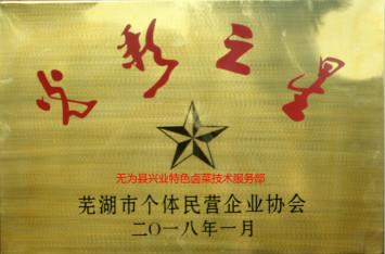 兴业卤菜加盟店喜获芜湖市光彩之星荣誉称号