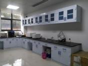 农科院PP实验台、吊柜