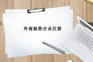外商独资公司注册