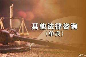 其他法律咨询