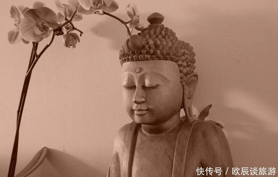 佛陀在菩提树下觉悟后,说的第一句话,开悟了无数人