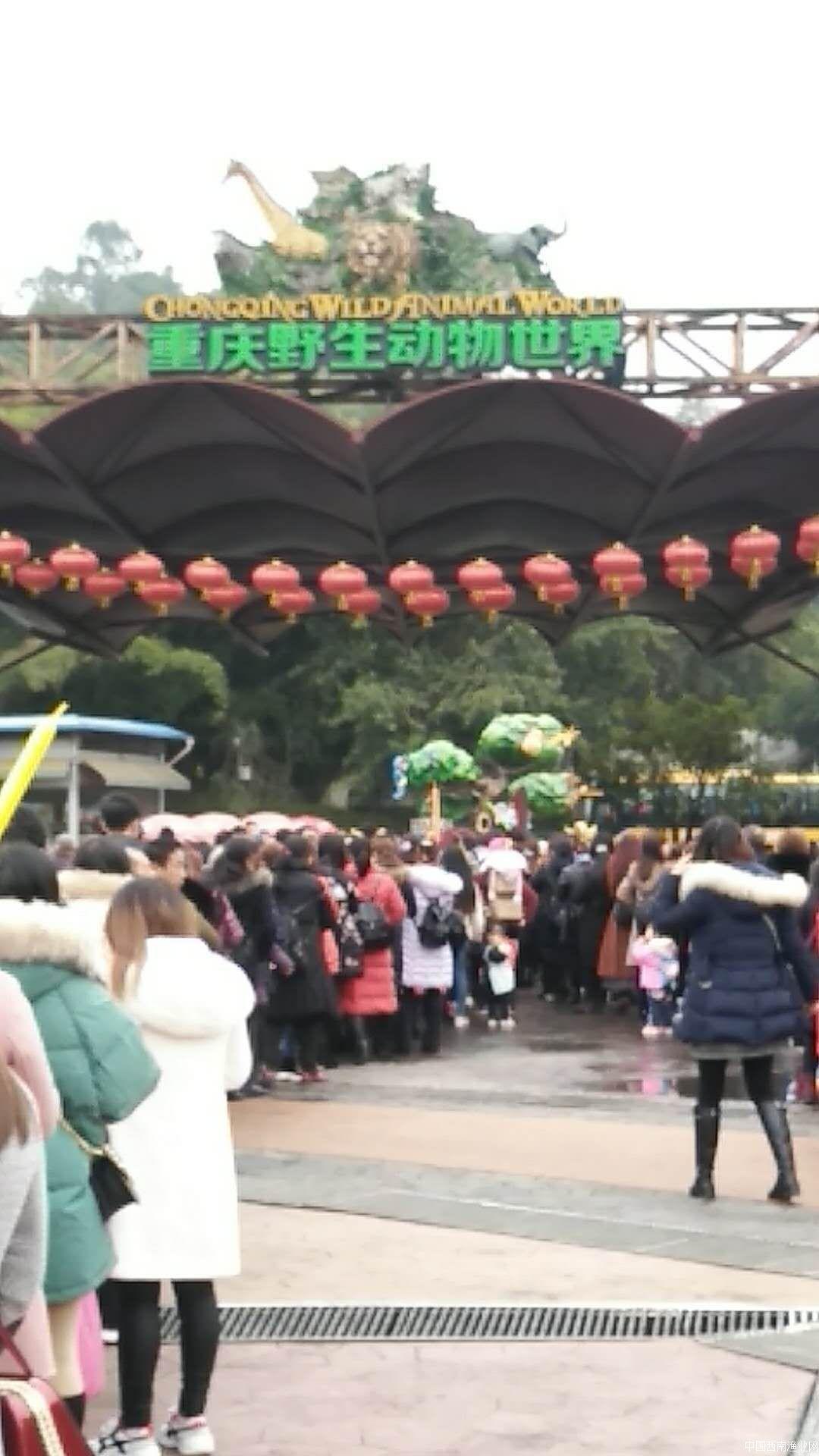 """永川水花渔业会社""""双庆祝""""活动"""