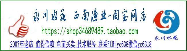 西南渔业---淘宝网店