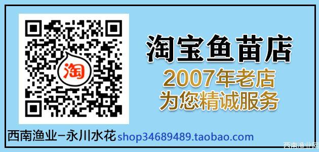 西南渔业网淘宝网店