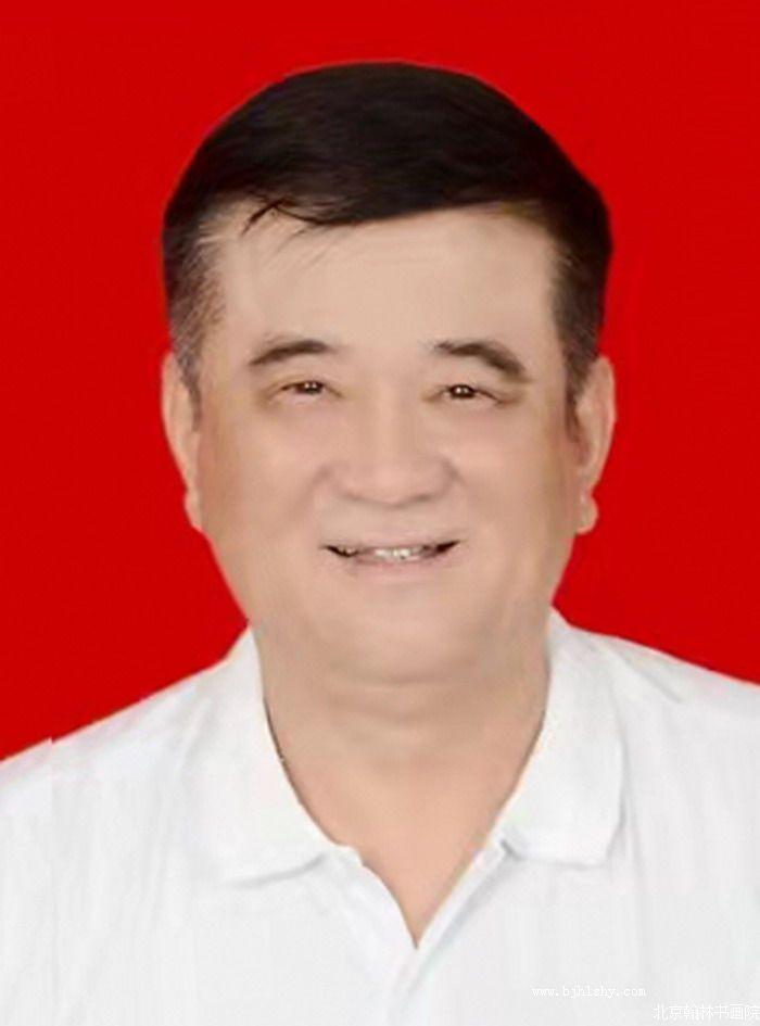 王洪波,北京翰林书画院西安分院常务院长